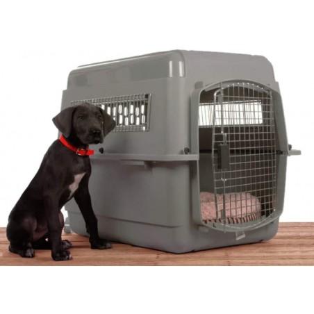 Caisse de transport pour chien Skykennel