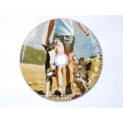 DVD : Tricks et marche au pied