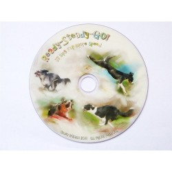 DVD : Ready - Stop - Go !