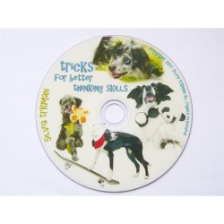 DVD : Tricks for Better Thinking Skills