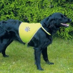 Gilet de Sécurité Jaune pour chiens