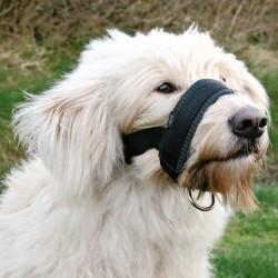 Muselière Sangle en Nylon pour chiens