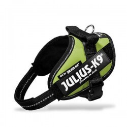 Harnais Julius K9 IDC - Mini  Julius-K9 - 12