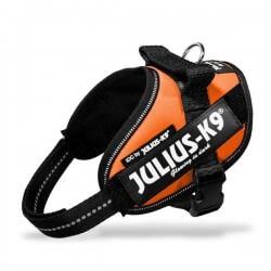 Harnais Julius K9 IDC - Taille 0 Julius-K9 - 10