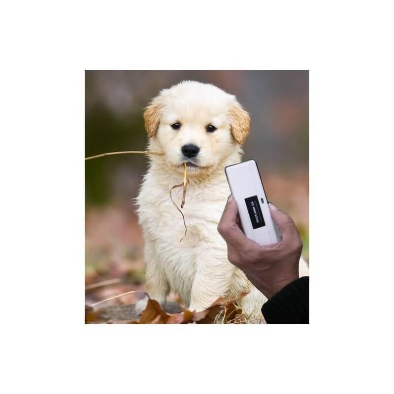 Lecteur de puce électronique Pocket