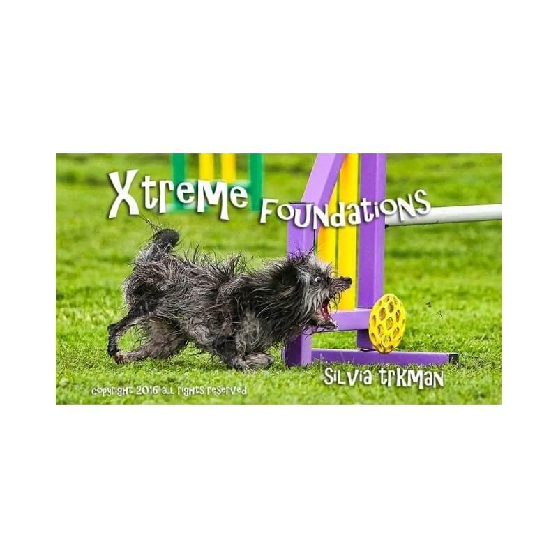 DVD XTREME FOUNDATIONS - silvia trkman