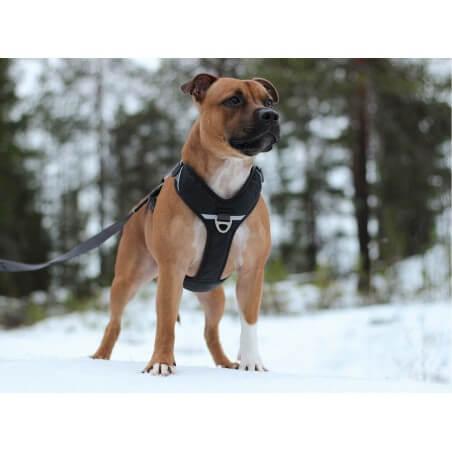 DOG COPENHAGEN : Harnais confort WALK PRO