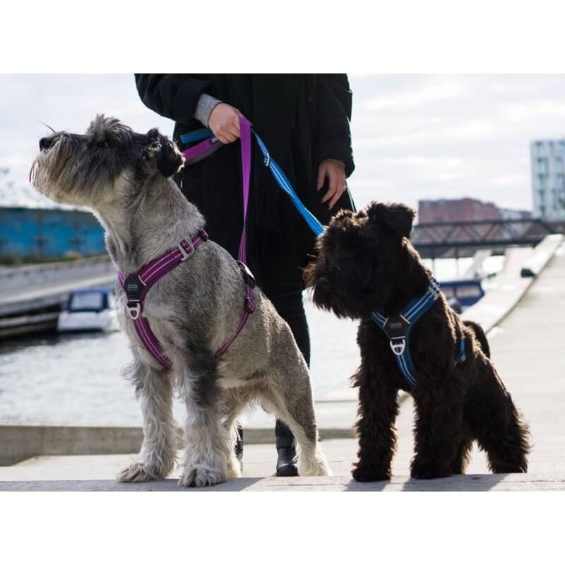 DOG COPENHAGEN : Harnais confort WALK AIR
