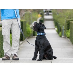 DOG COPENHAGEN : Collier Urban Explorer