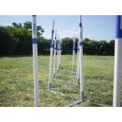 AGILITY RUN : Slalom couloir d'entraînement