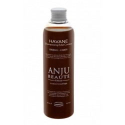 ANJU BEAUTE : Shampooing HAVANE