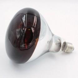 Ampoule Phillips 100W