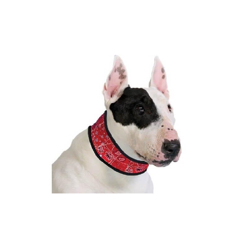 AQUA COOLKEEPER - Collier rafraîchissant pour chien