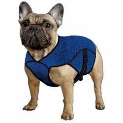AQUA COOLKEEPER - Veste rafraîchissante pour chien Aqua Coolkeeper - 1