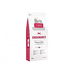 BRIT-CARE : Endurance