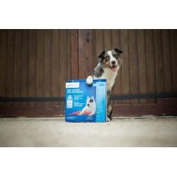AQUA COOLKEEPER - Tapis rafraîchissant pour chien Aqua Coolkeeper - 2