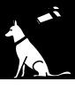 education_chien